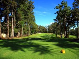 Los Reyes Golf Club